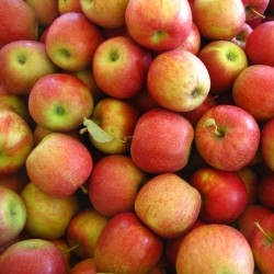 Măr Jonagold cu ghiveci